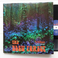 The Bleu Forest-Ichiban-Live At Jimmie's-'67 Psychedelic Garage Rock-NEW LP