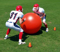 Fisher Impact Ball
