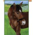 Peanut the Pony (hORSE) : Illuminated Flags