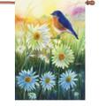 Bluebird at Sunrise: Illuminated