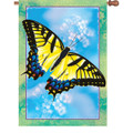 Swallowtail Butterfly :     House Brilliance