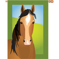 Silly Filly (Horse): Brilliance