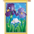 Enchanting Irises :     House Brilliance
