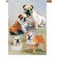 Bulldogs :     House Brilliance