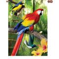 Birds in Paradise :     House Brilliance