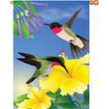 Always Hummingbirds :     House Brilliance