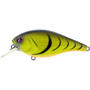 Biggie Smalls Creepin Slow Floater Crankbait River2Sea Lure