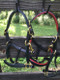 The finest padded miniature horse halters, made in USA