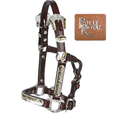 Billy Royal® Texas Classic Mini Halter