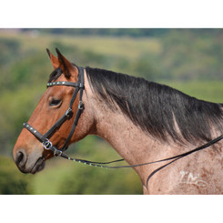 2 in 1 BITLESS BRIDLE made from BETA BIOTHANE (with BLING)