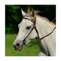 WESTERN BRIDLE (Full Browband) made from BETA BIOTHANE (with SILVER SPOTS or STUDS)