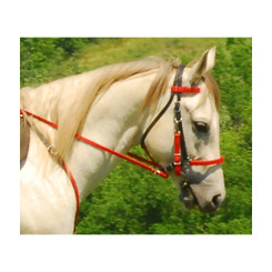 Traditional HALTER BRIDLE with BIT HANGERS made from BETA BIOTHANE (Mix N Match)