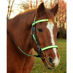 Quick Change HALTER BRIDLE with Snap on Browband made with REFLECTIVE DAY GLO Biothane