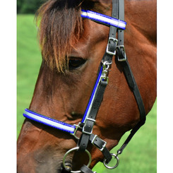 Traditional HALTER BRIDLE made with REFLECTIVE DAY GLO Biothane