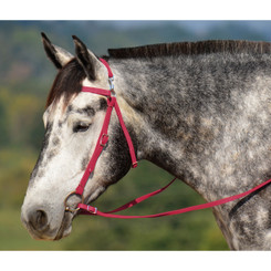 MULE BRIDLE made from BETA BIOTHANE