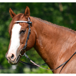 Snap on Browband WESTERN BRIDLE made from BETA BIOTHANE (ANY 2 COLOR COMBO)