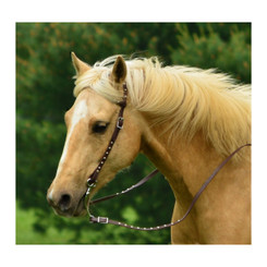WESTERN BRIDLE (One or Two Ear Split Ear Browband) made from BETA BIOTHANE (with SILVER SPOTS or STUDS)