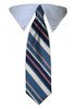 Blue Stripe Tie Collar