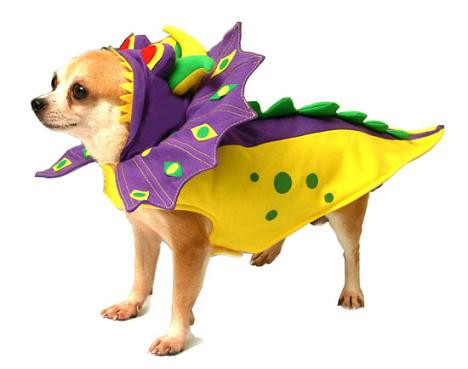 how to make a dragon costume for dog