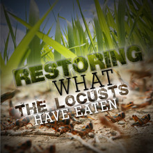 Restoring What the Locusts Have Eaten MP3