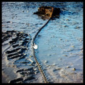 Mooring chain replacement - visible mooring at low tide.