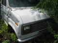 1983FORDE-25000830