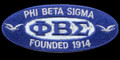 """Sigma Founders Oval Holographic Emblem - 4""""W"""