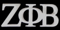 Zeta Greek Letter Lapel Pin - Silver