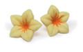 Dobla Flower White
