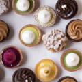 NEW - Opera Patisserie - Mini Tartlet Assorted