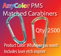 ANYColor pms matched carabiners with laser etch imprint, qty 2500