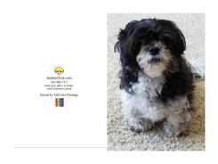Custom Greeting Card - Iambic Chick Dog