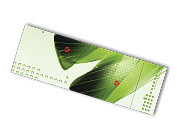 full color perforated rip cards