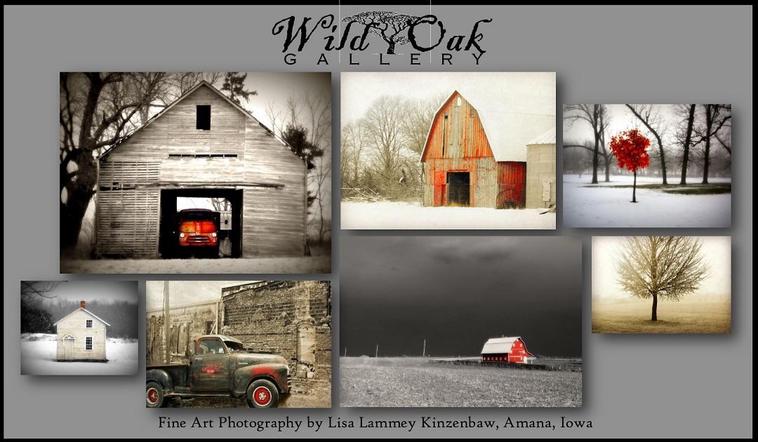 Wild Oak Gallery
