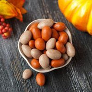 Pumpkin Pie Almonds - 8oz