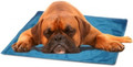 Cool Pet Pad - Large