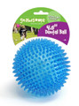 Gnawsome Dental Ball Dog Chew Toy -- Extra Large