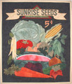 Sunrise Seeds