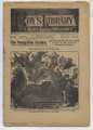 1899 BEADLES BOY'S LIBRARY OF SPORT, STORY & ADVENTURE # 39 THE YOUNG BEAR HUNTERS DIME NOVEL