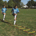 Speed and Agility Ladder