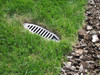 """12"""" PVC C900 CL200 Mitered Drain w/Gray HDPE Grate"""