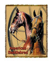 Saddlebred Throw  SKU # A19-1401G   Two elegant American Saddlebred horses are beautifully displayed on this stunning throw.   100% cotton tapestry afghan.  Machine washable.  Made in the USA.