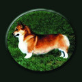 "Corgi Pillow  SKU # A19-1201B  A sweet Corgi is beautifully displayed on this colorful pillow.  Made in the USA.   2 lb.  16"" W x 16"" H x 2.5"" D"