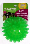 Gnawsome Dental Ball Squeak & Light Chew Toy -- Small 2.5""