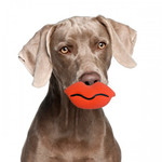 Silly Faces Big Lips Dog Toy