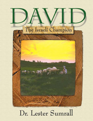 David: The Israeli Champion - Study Guide