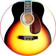 Sébastien Lefebvre Simple Plan Acoustic Taka Sunburst Miniature Guitar Collectible