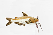 "Plush 17"" Channel Catfish"
