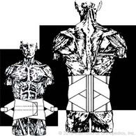Heavy Duty Diamond-Back Lumbosacral Support Item# 186