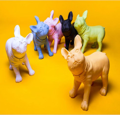 Dog Mannequin - French Bulldog MM-BULLDOG